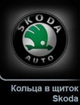 Кольца в щиток приборов Skoda в Tuning-market Молдова