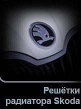 Решетки радиатора Skoda в Tuning-market Молдова